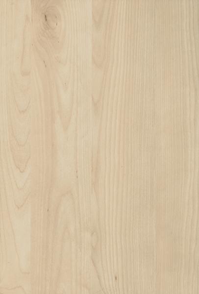 Maple (10)