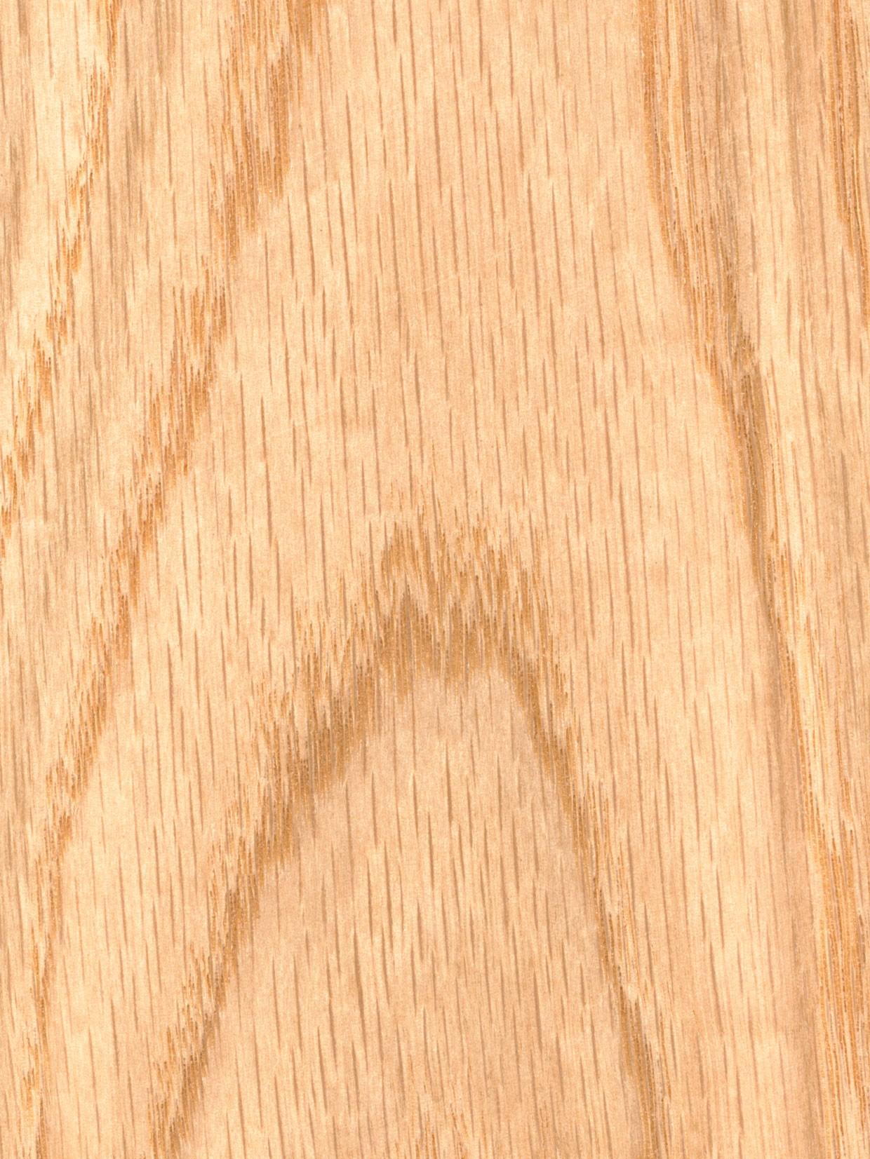 Oak Slab Door