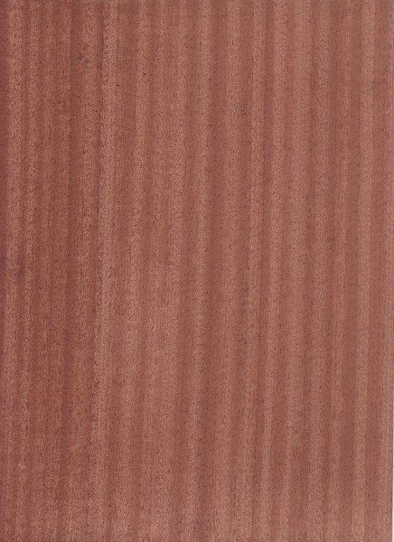 Slab Door Sapele